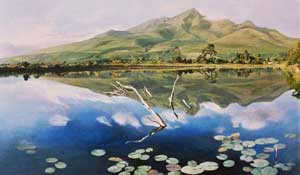 JAMES STEAD -Garden route dam, George
